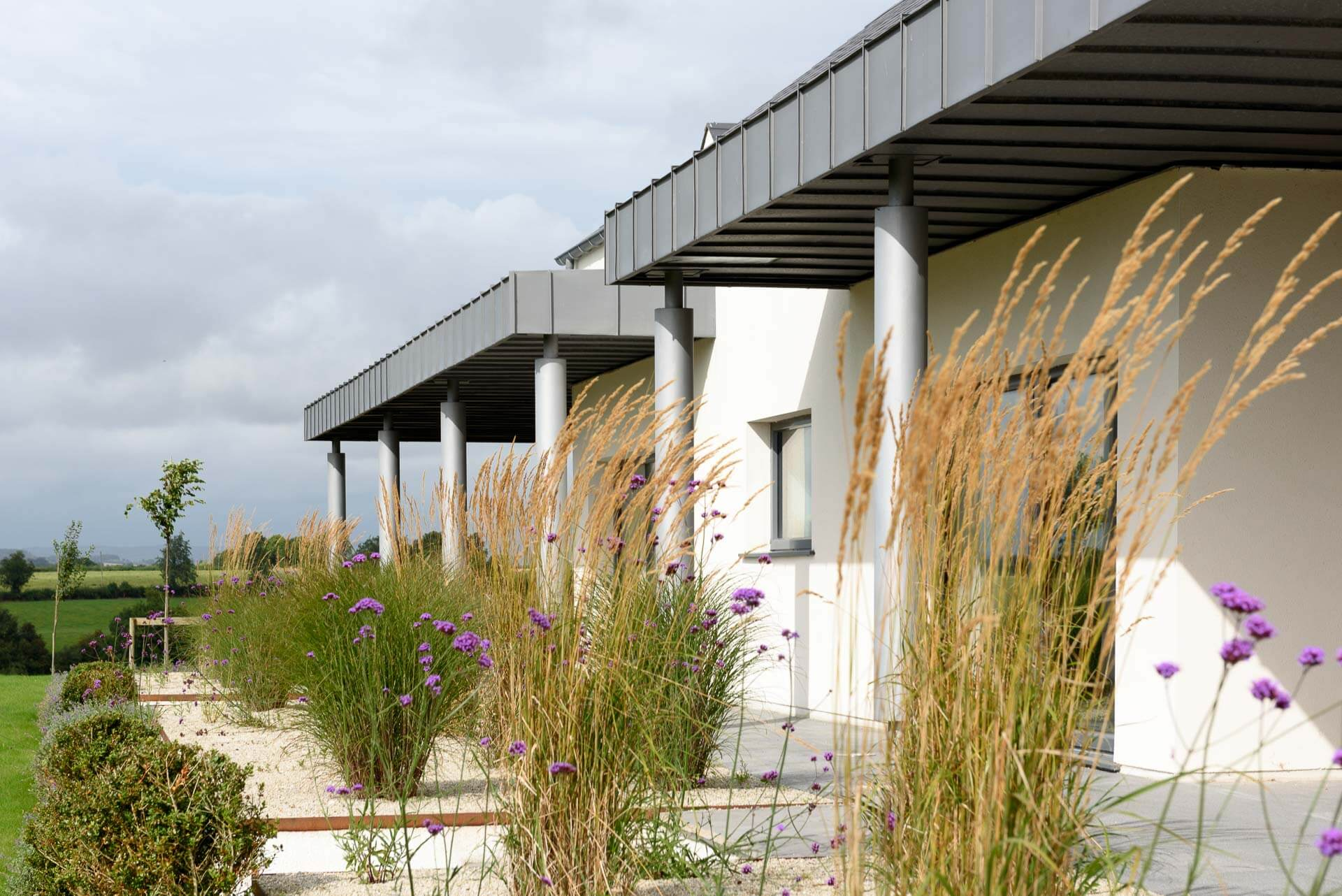 Grey zinc colonnade to a certified passive house with reeds blowing in the wind in the foreground.