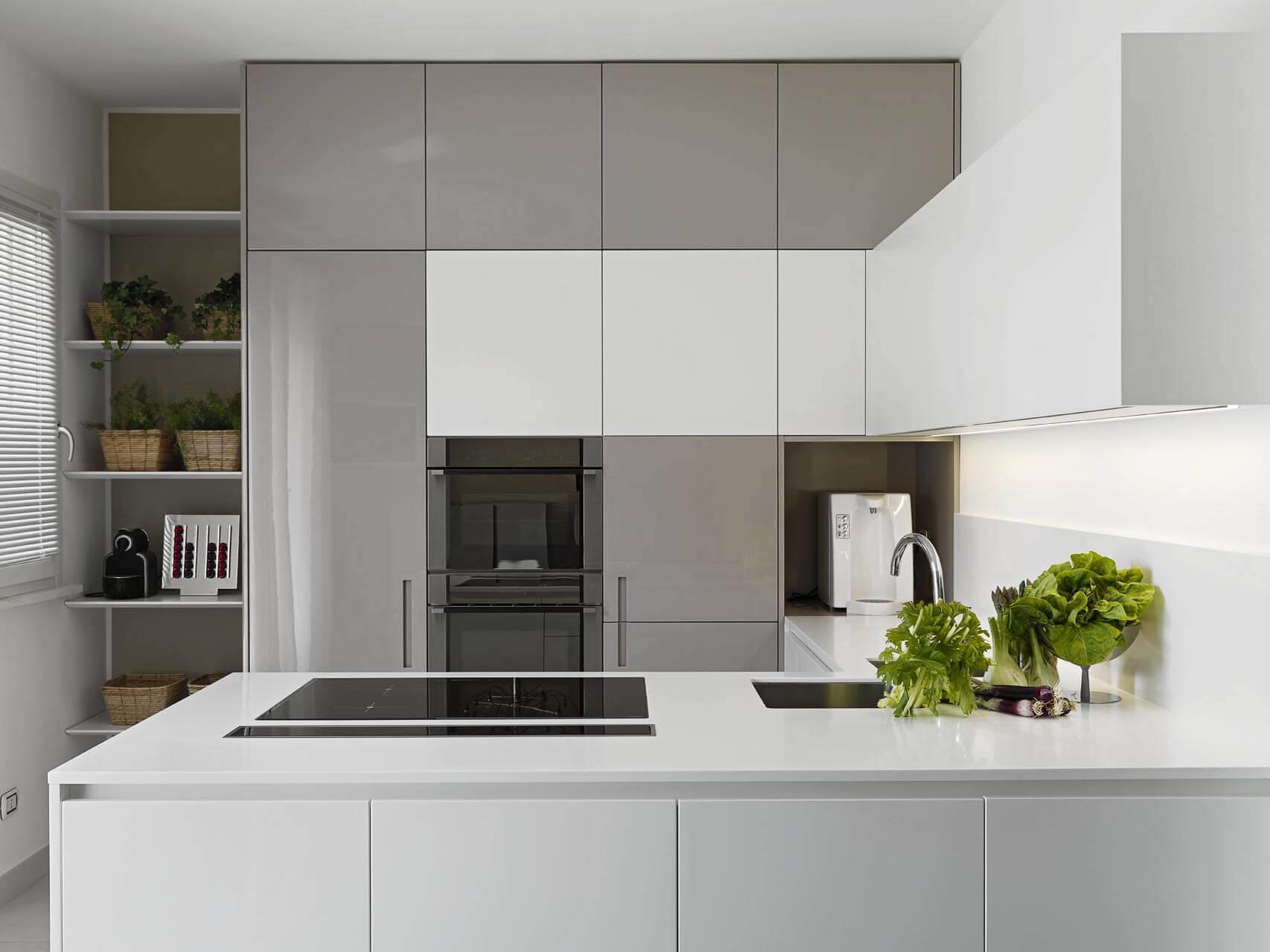 Modern kitchen in grey and white palette with fresh herbs on the counter top